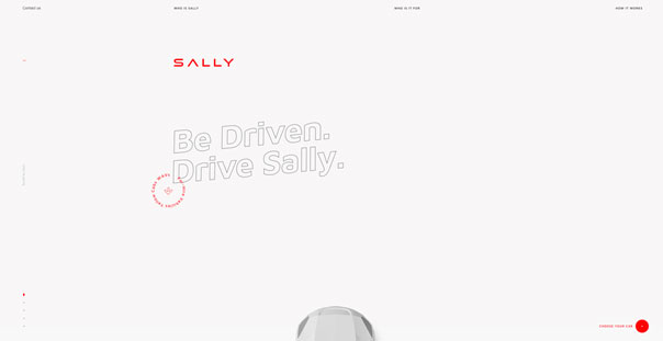 Sally – Online als Fahrer bewerben